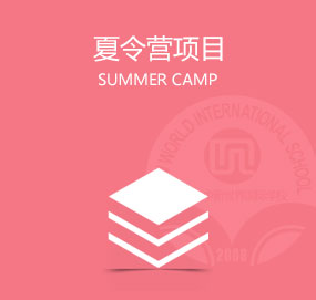 夏令营项目